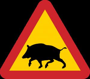 animali-selvatici
